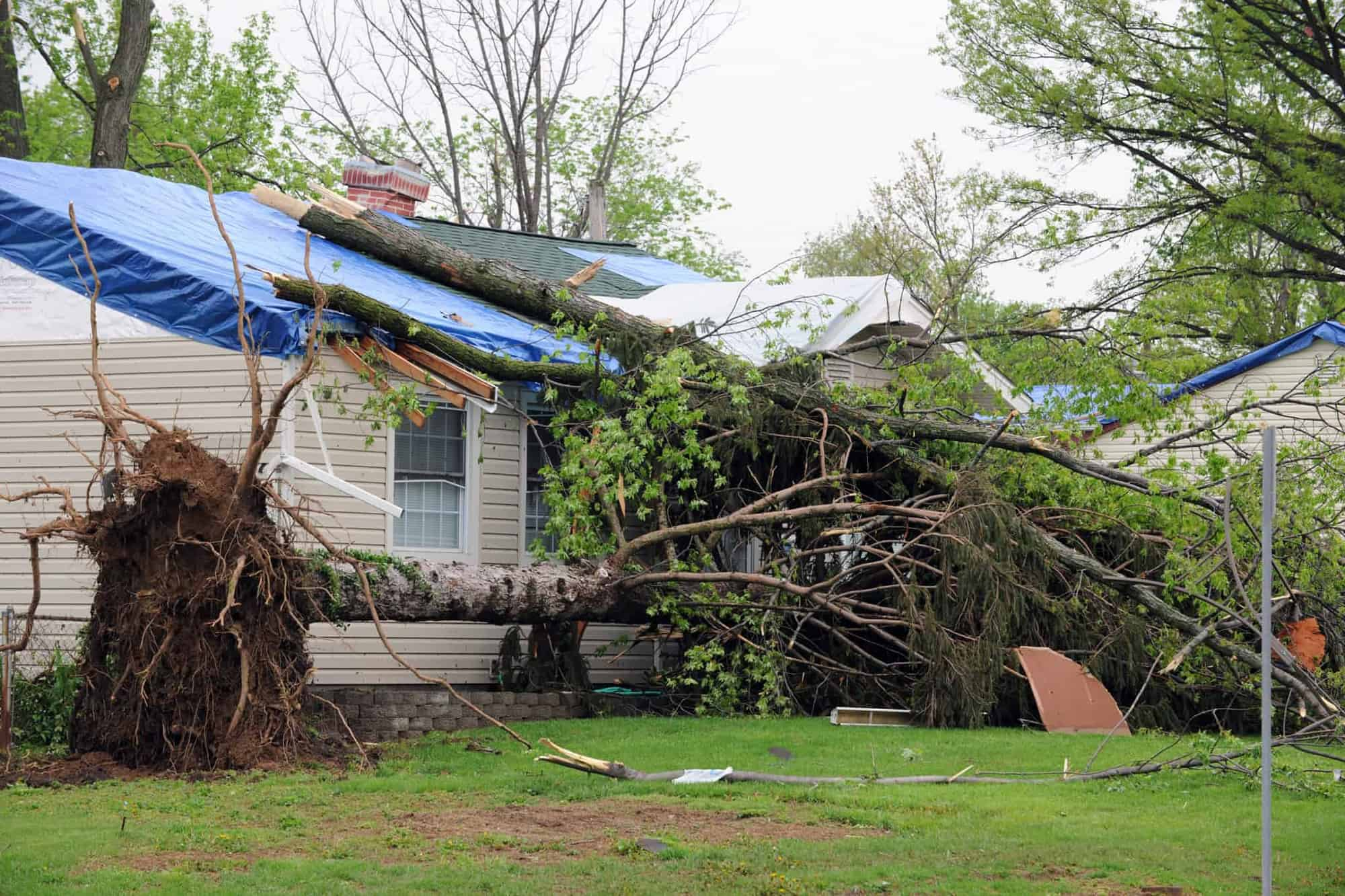 CleanMaster Services responds to and restores property damaged by wind and storms